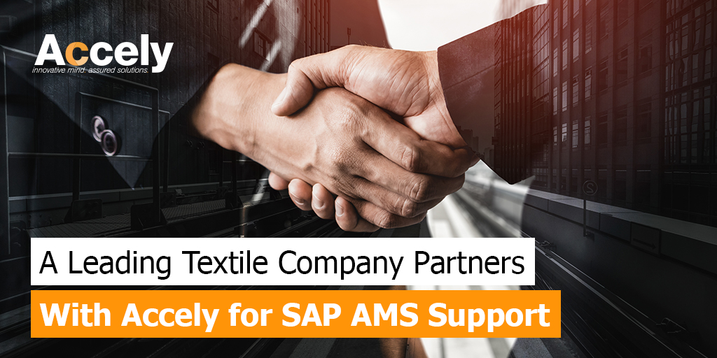 SAP AMS Support